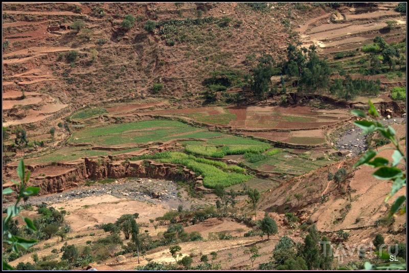 Mekele - Axum. Монастырь Дыбре Дамо / Фото из Эфиопии