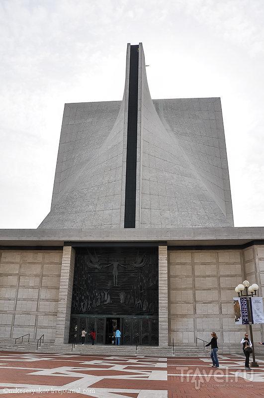 Здание собора Святой Марии в Сан-Франциско, США / Фото из США