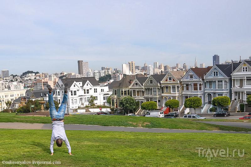 Аламо-сквер в Сан-Франциско, США / Фото из США