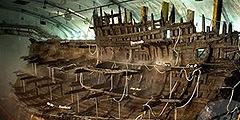 Шхуна Mary Rose затонула 437 лет назад.