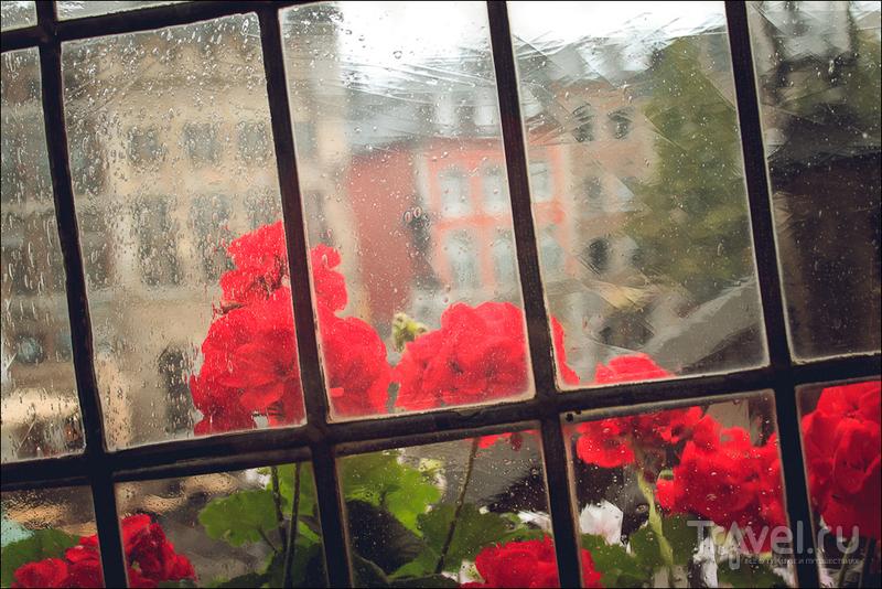 Дождливый Ахен / Фото из Германии