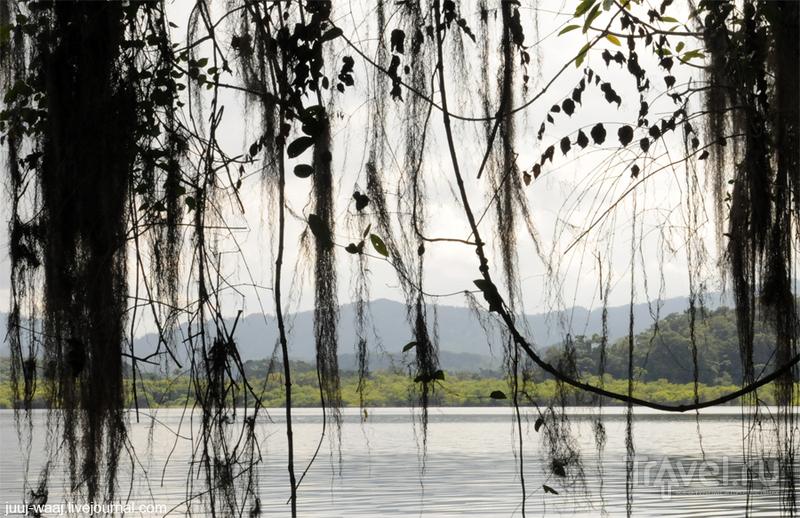 Поездка к лакандонам на озеро Мецабок / Фото из Мексики