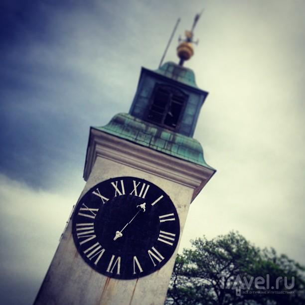 Кругосветка без кошелька: Нови-Сад, Сербия / Сербия