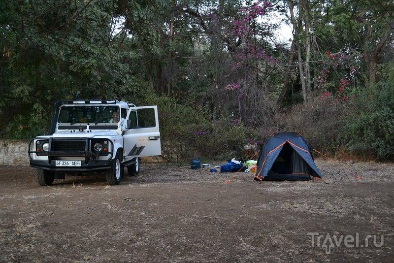 Самостоятельное сафари в Танзании. Подготовка и прилет / Кения
