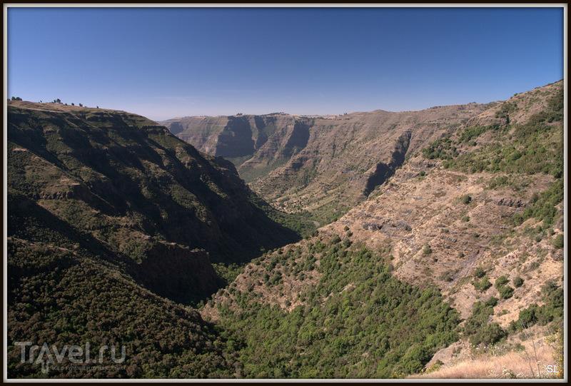 Simien Mountains Nationaal Park. Поход / Фото из Эфиопии