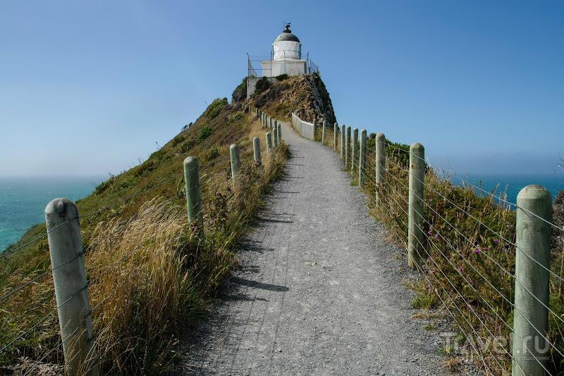 Южный остров, Новая Зеландия / Фото из Новой Зеландии