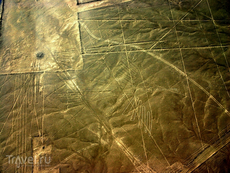 Загадочные геоглифы на плато Наска в Перу / Перу