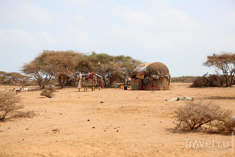 В Сомали / Фото из Сомали
