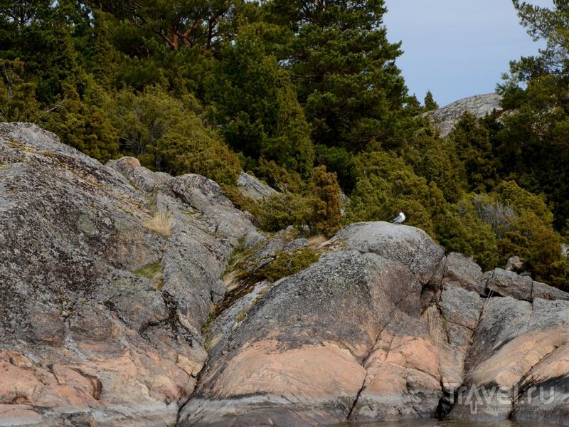 Живописные пейзажи архипелага Турку в Финляндии / Фото из Финляндии