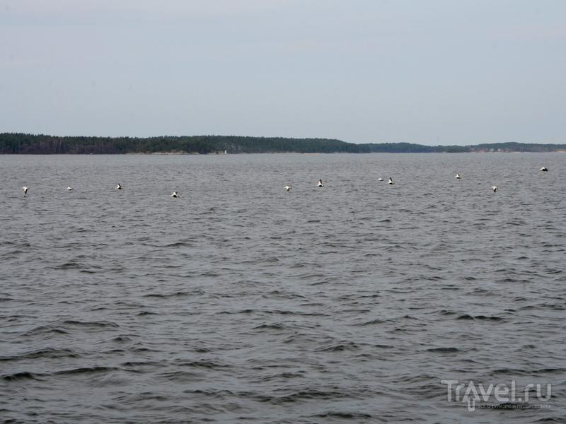 Архипелаг Турку, Финляндия / Фото из Финляндии