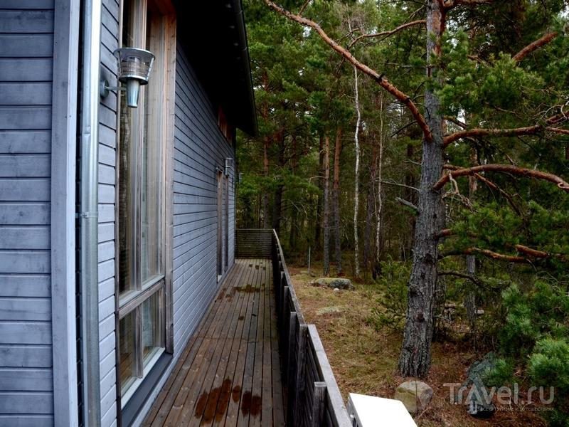 Один из коттеджей на острове Океттума в архипелаге Турку, Финляндия / Фото из Финляндии