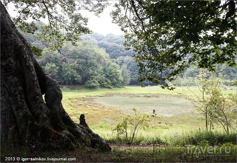 У Кутузовского озера на Ангарском перевале в Крыму, Украина / Фото с Украины