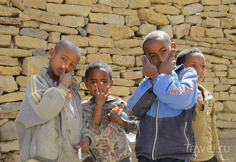 В городе Мекеле, Эфиопия / Фото из Эфиопии