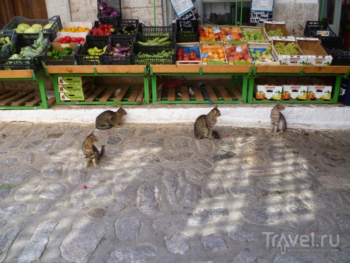 На кораблике по островам. Остров Идра (Гидра) / Греция
