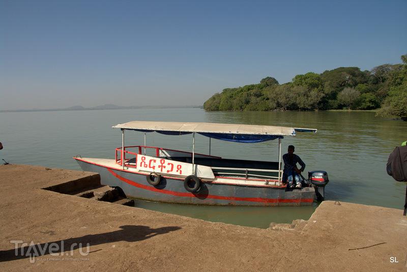 Озеро Тана / Фото из Эфиопии