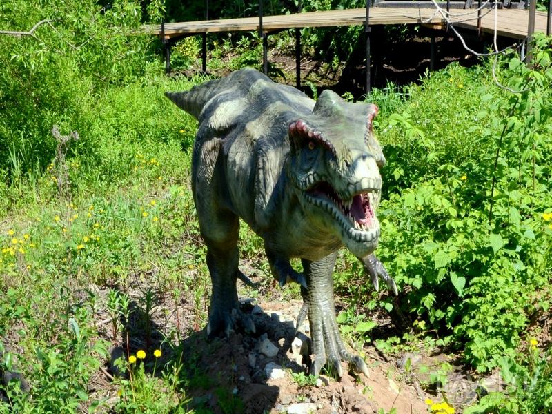 Путешествие в Киров: динозавры, игрушки и Кикимора Вятская / Фото из России