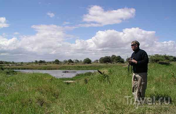 Как правильно фотографировать бегемотов / ЮАР