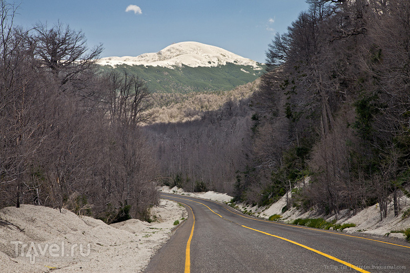 Зелёный край озёр и вулканов / Чили