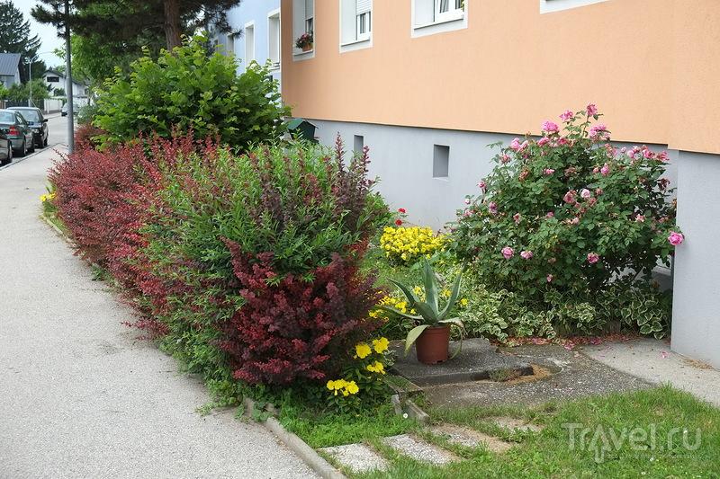 Винер-Нойштадт. Австрийская провинция / Австрия