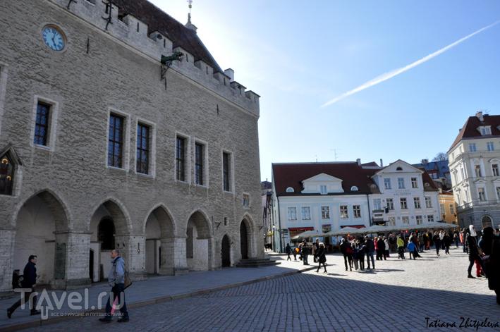 На Ратушной площади в Таллине, Эстония / Фото из Эстонии