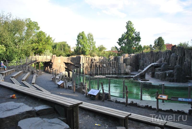 Пражский зоопарк. Зеленый рай на 45 гектарах / Чехия