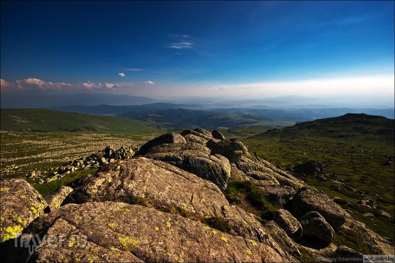 Витоша. Прогулочное / Фото из Болгарии