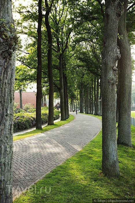 Нидерланды. Университет Твенте / Нидерланды