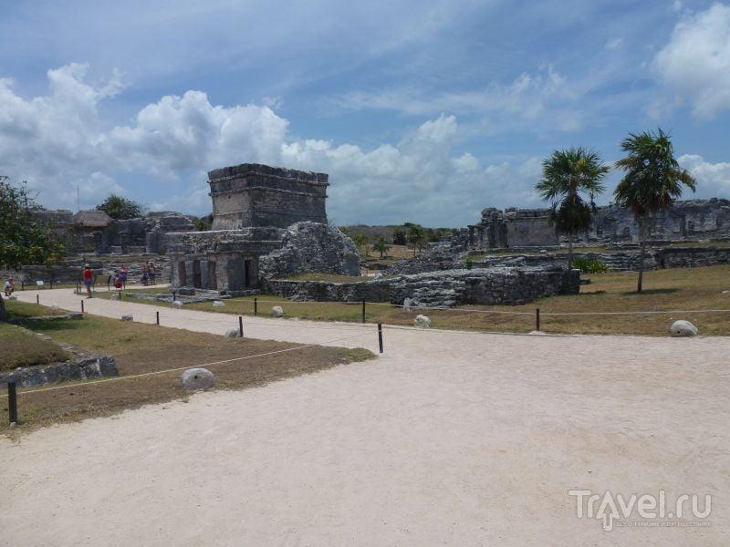 Тулум - территория игуан / Мексика