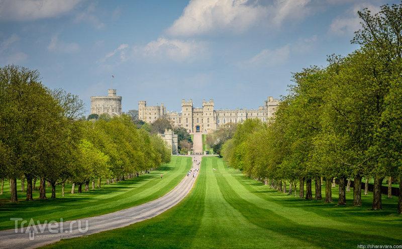 Виндзорский замок, Великобритания / Фото из Великобритании