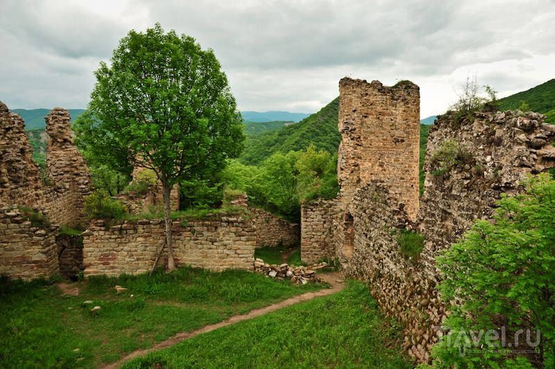Близ деревни Уджарма, Грузия / Фото из Грузии