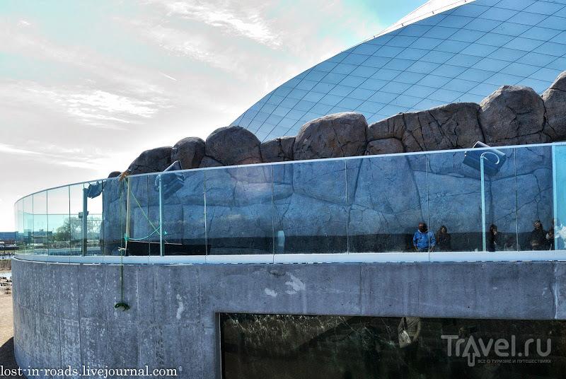 """Аквариум """"Голубая планета"""", Копенгаген / Дания"""