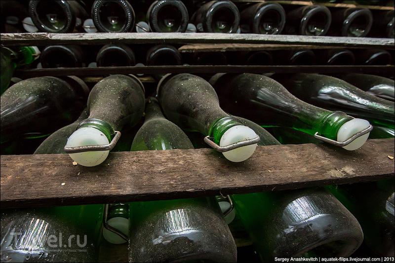 Голицынские подвалы Нового Света / Украина