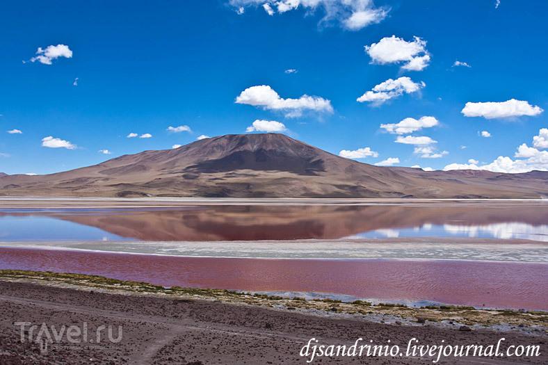 Solar Lagunas, Dali Rock Desert, Arbol de Piedro, Rock Valley / Фото из Боливии