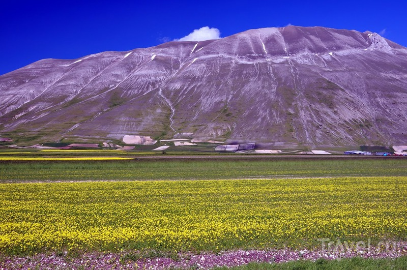 La Fioritura dell'altopiano di Castelluccio di Norcia / Италия