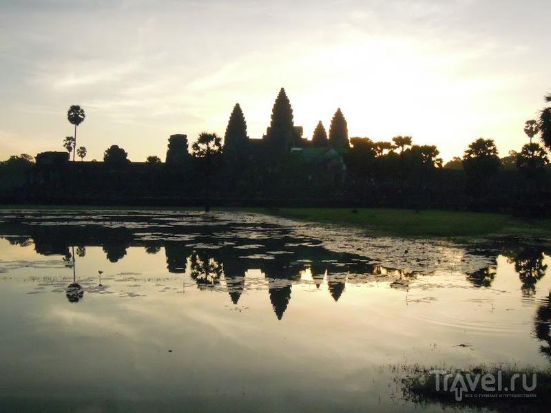 В Ангкор Вате, Камбоджа / Фото из Камбоджи