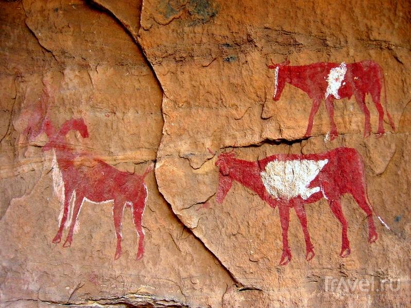 Уникальные скальные росписи в горном массиве Адрар-Акакус, Ливия / Ливия