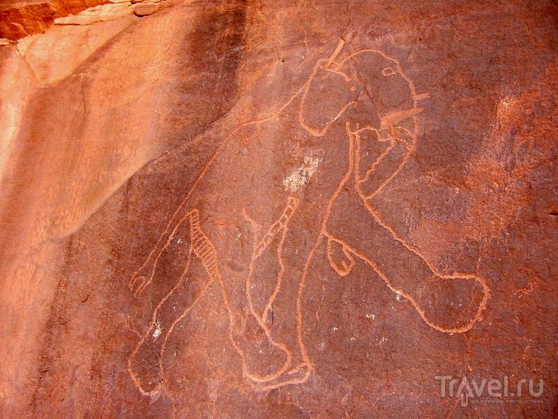 Изображение слона на скальных выступах в горном массиве Адрар-Акакус, Ливия / Ливия