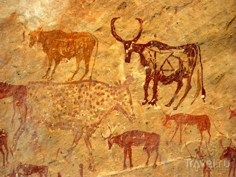 Петроглифы с изображением животных в горном массиве Адрар-Акакус, Ливия / Ливия