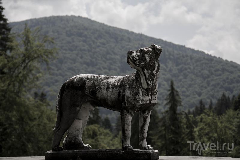 Трансильвания, Синая - Замки Пелеш и Пелишор / Фото из Румынии