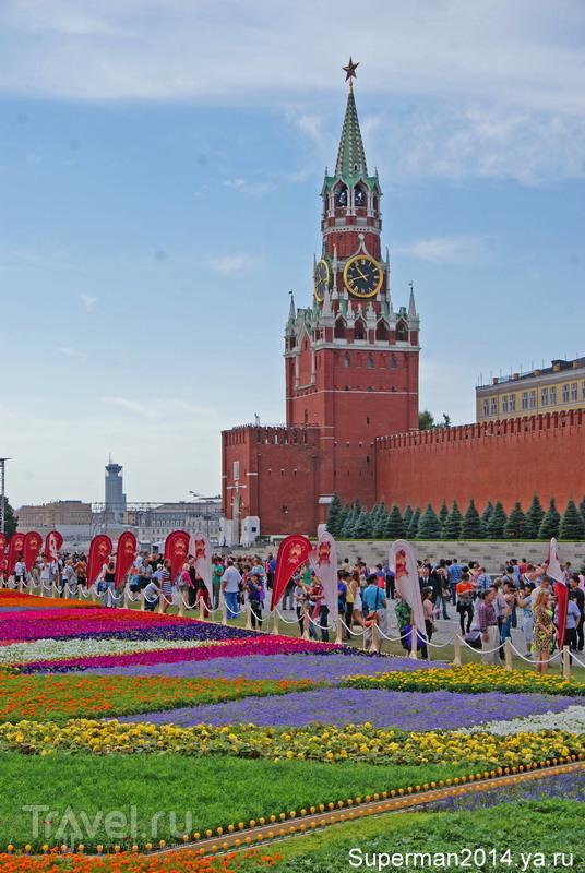 Цветочный ковёр на Красной площади / Россия
