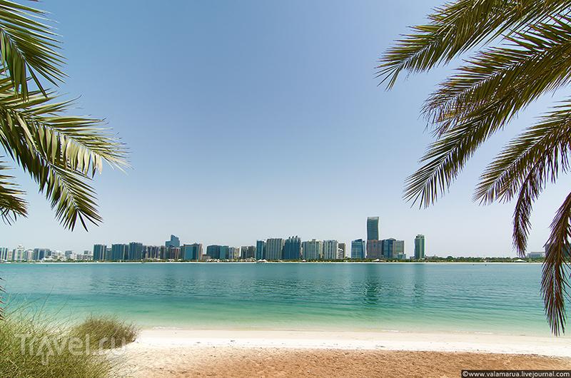 В Абу-Даби, ОАЭ / Фото из ОАЭ