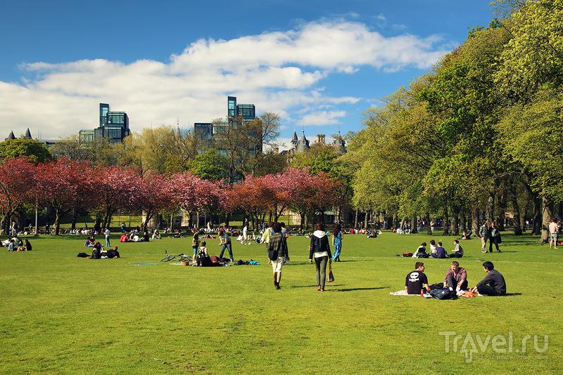 Парк The Meadows в Эдинбурге, Шотландия / Фото из Великобритании