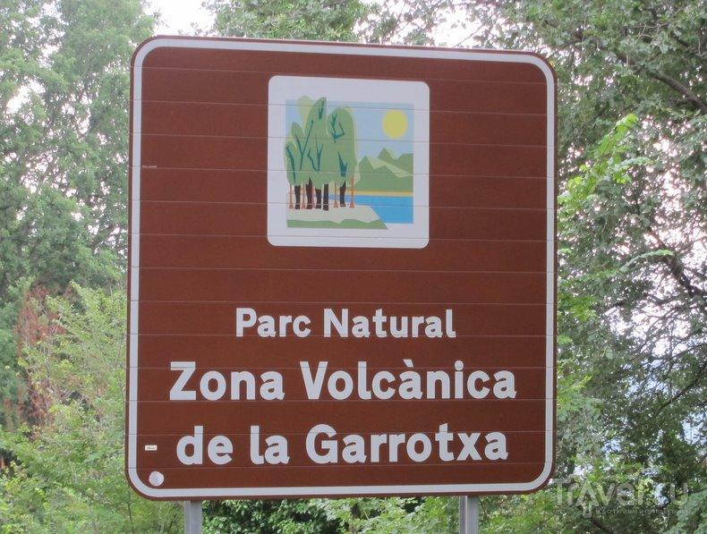 В природном парке вулканической зоны Гарроча / Фото из Испании