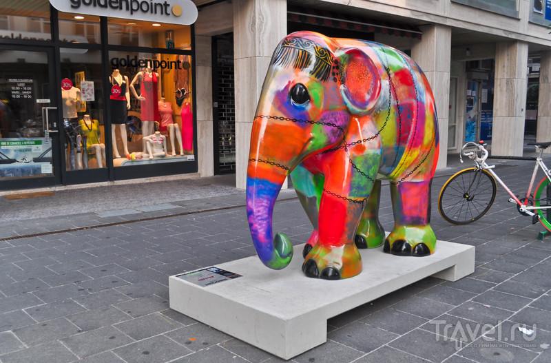 Купи слона! / Люксембург
