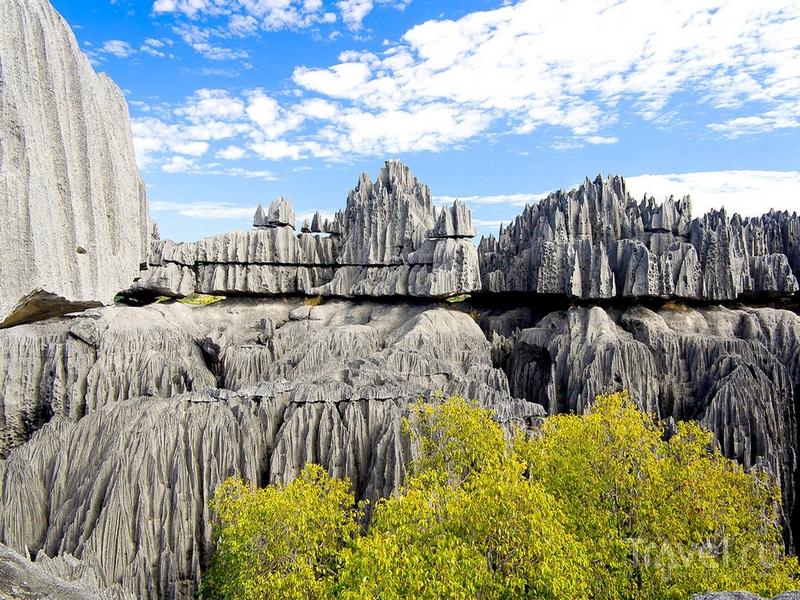 Скальные выступы и каньоны заповедника Tsingy de Bemaraha, Мадагаскар / Мадагаскар