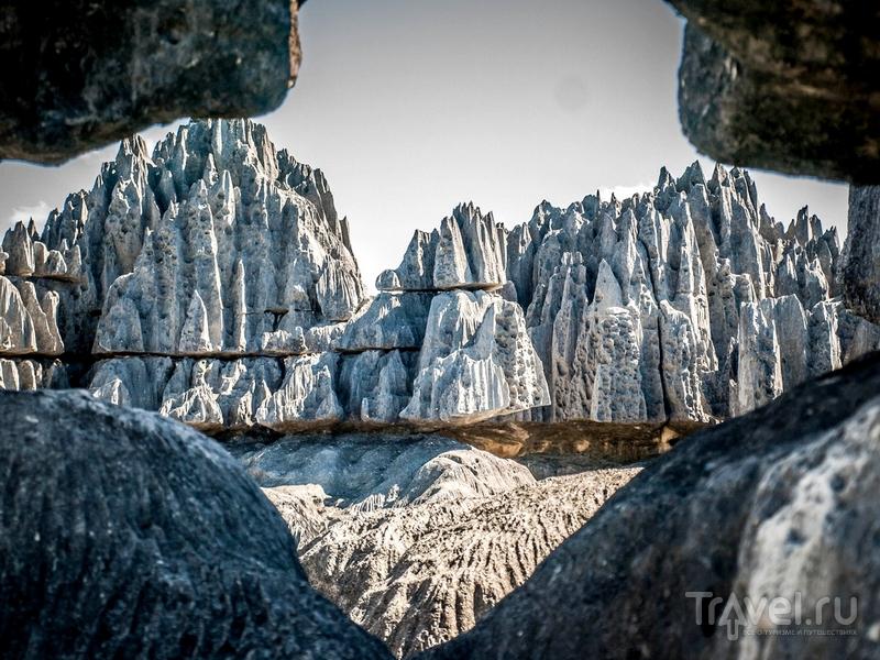 """""""Каменный лес"""" на Мадагаскаре / Мадагаскар"""