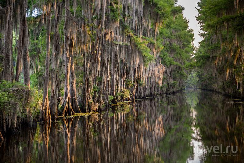 Каддо - озеро призраков, США / США