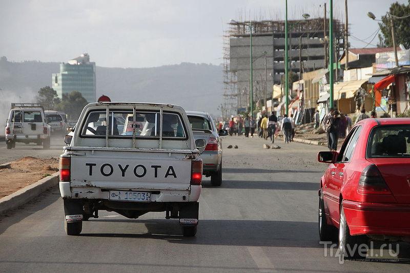 Дикий портрет Рифтовой долины. Аддис-Абеба / Фото из Эфиопии