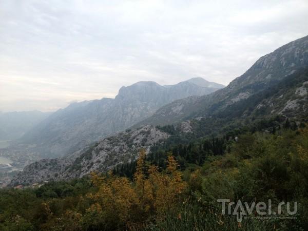 Которский залив - городки Пераст и Котор / Черногория