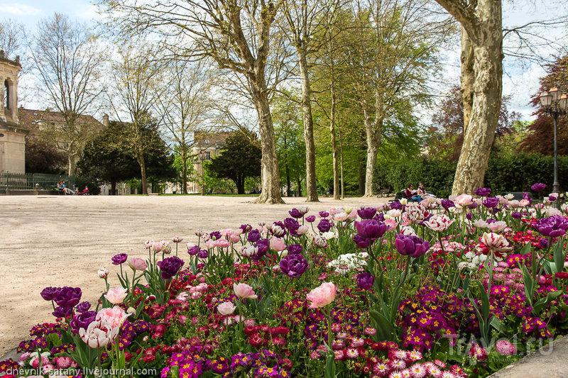 В городе Дижон, Франция / Фото из Франции